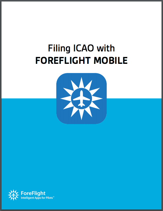 Filing_ICAO_Guide.png